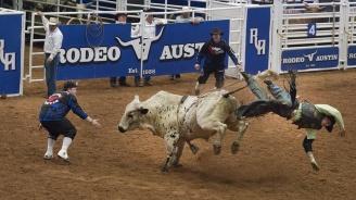 Загина един от най-добрите ездачи на бикове в света (видео)