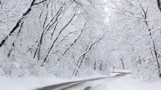 Седмицата ще е ветровита и снежна