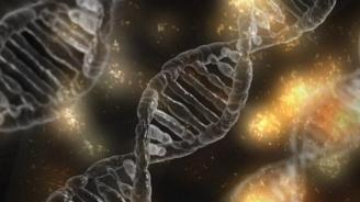 Китай създава закони за борба с незаконните генетични експерименти
