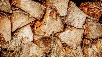 Заловиха мъж, превозвал 6 кубика незаконно добити дърва за огрев