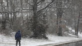 Сърбия почервеня от сняг (видео)