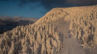 Снегът в Пампорово достига 2 метра, добри са условията за ски