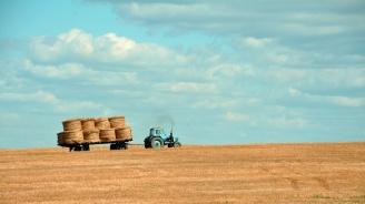 Планирани са близо 3 млрд. лв. за подпомагане в  земеделието през 2019 г.