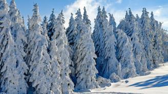Добри са условията за туризъм в ниските части на планините