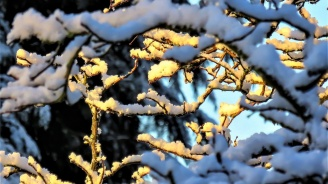 Ето какво време ни очаква в първия ден на февруари