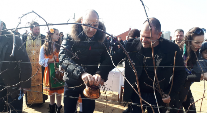 Цветан Цветанов заряза лозов масив край Харманли