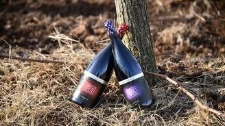 Производители налагат алтернативи на класическата коркова тапа в български вина