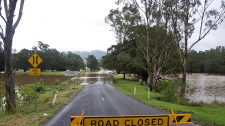 Крокодили и змии пълзят по улици в Австралия след наводненията (видео)