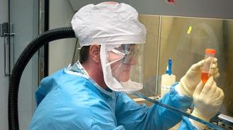Наночастици в храни и лекарства могат да допринесат за развитие на рак