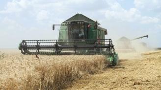 Добричката община дава под наем земеделски земи