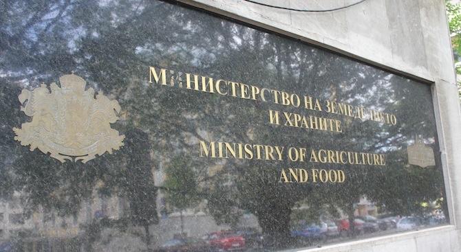 МЗХ организира кръгла маса срещу разхищението на храна