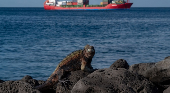 Събраха близо 4,5 млн. тона боклуци от островите Галапагос