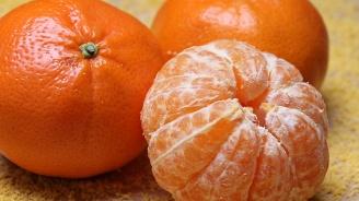 В Република Сръбска забраниха вноса на мандарини от Турция заради пестициди