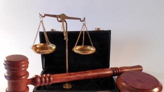 Сливенската прокуратура повдигна обвинения на двама мъже, отглеждали коноп