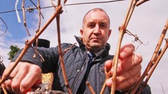 Радев: За модерно земеделие само ентусиазмът и любовта към земята не стигат