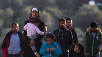 Молбите за убежище в Европа стигнаха нивото преди имиграционната криза от 2014 г.