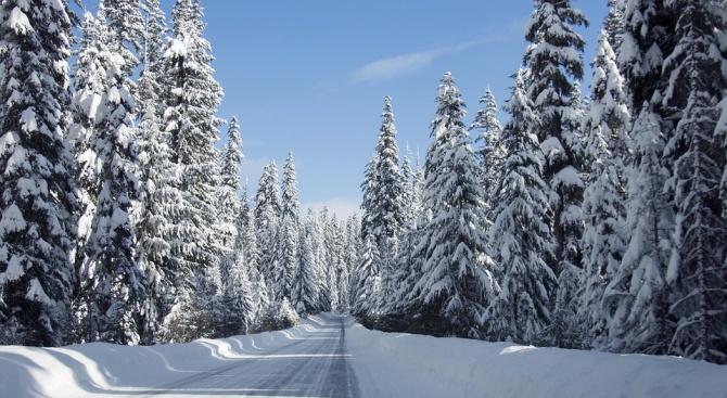 Снимка: Затварят за автомобили планинските пътища на Витоша