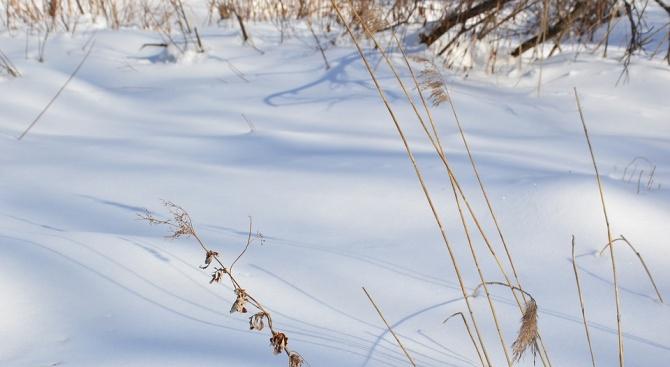 Най-значителна е снежната покривка в Монтана, в Разград и Драгоман