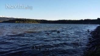 РИОСВ - Шумен разпореди почистване на речните корита