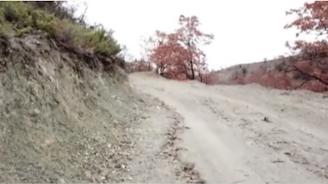Уволниха директора на горското стопанство в Кресна заради прокараните зад гърба на държавата пътища