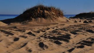 Правителството предлага промени в Закона за устройство на Черноморското крайбрежие