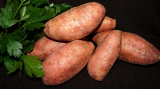 Любопитни факти за сладкия картоф