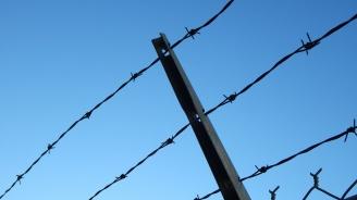 Смартфон в консерва - хит в затвора