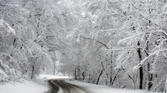 Снегът затвори редица пътища в страната