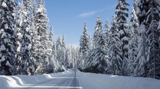 Затварят за автомобили планинските пътища на Витоша