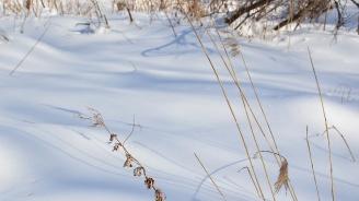 Ето къде падна най-много сняг