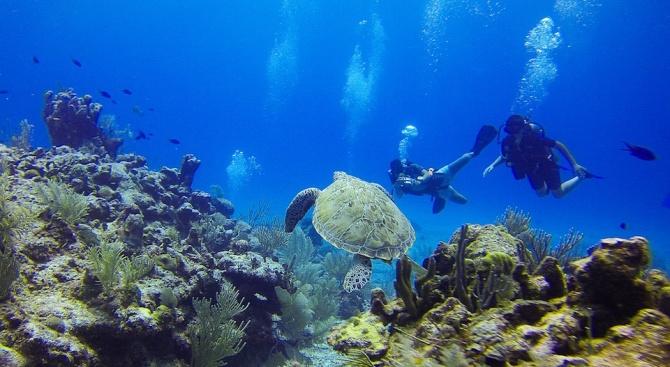 Микропластмасата достига до океанските дълбини
