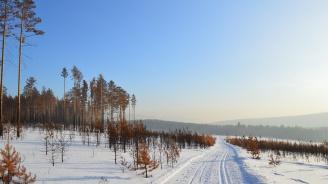 Разследват защо в Сибир вали черен сняг