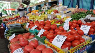 Цената на доматите е най-висока за последните 10 години
