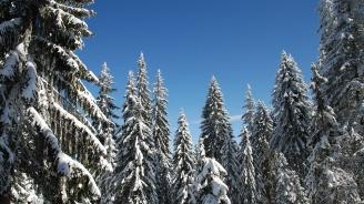 Зимният туристически сезон в Смолянска област се очертава добър