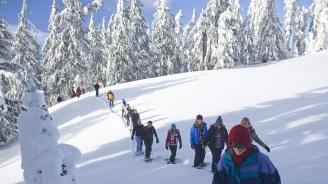С 1.3 на сто през януари се увеличават посещенията на чужденци в България