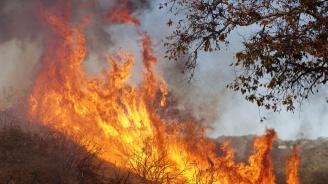 РИОСВ-София с мерки срещу горски пожари в Средна гора