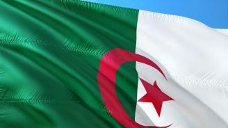 Най-малко един човек е загинал при протестите в Алжир