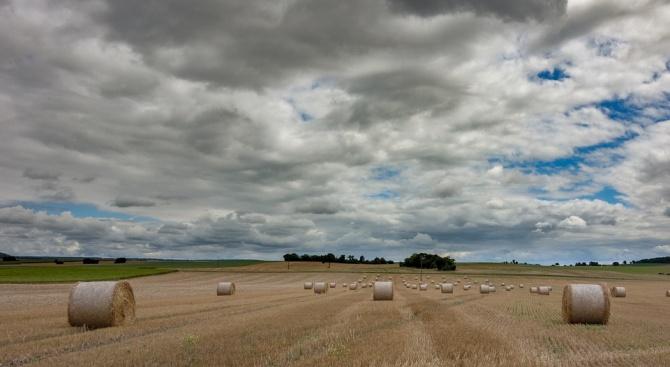 В Добричка област инвестициите за закупуване на земя намаляват с