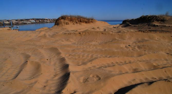 Държавата трябва да обезвъзмездява собствениците на земите, обявени за дюни,