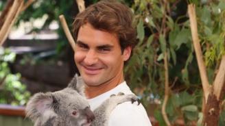 Най-известните коали в света