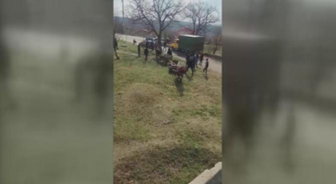Разследват жесток побой над коне в Русе