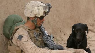 Ветеран от американските ВВС бе осъден на 10 години затвор в Иран