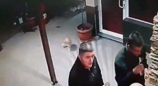 Пореден случай на агресия срещу животно – мъж удря и