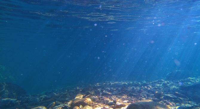 Повече от 5000 неизвестни досега подводни планини бяха включени в