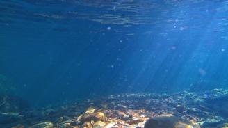 Американски учени картографираха океанското дъно