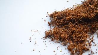 Иззеха 800 кг контрабанден тютюн във Видин