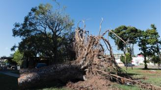 Циклон с пориви на вятъра от 250 км/ч връхлетя Северна Австралия