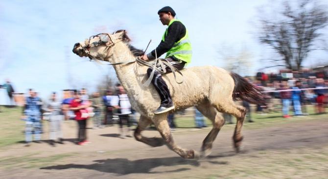 Организират конни надбягвания утре в Радомир