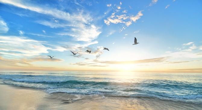 Преди около 430 милиона години морското ниво започнало да се