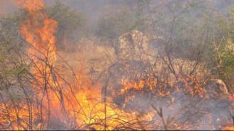 Само за ден: В Русенско са станали над 10 полски пожара